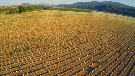 A-beautiful-aerial-over-farm-fields-in-California