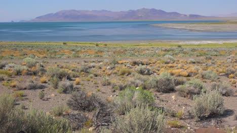 An-establishing-shot-of-Pyramid-Lake-Nevada-1