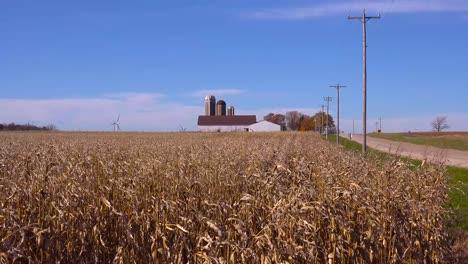 Campos-De-Maíz-Ondulado-En-La-Brisa-A-Lo-Largo-De-Una-Carretera-Rural-En-Un-Soleado-Día-De-La-Granja-De-Wisconsin