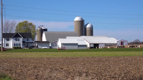 Wide-shot-of-a-Wisconsin-dairy-farm-as-cows-enter-the-barn