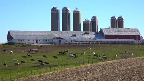 Beautiful-establishing-shot-of-a-Wisconsin-dairy-farm