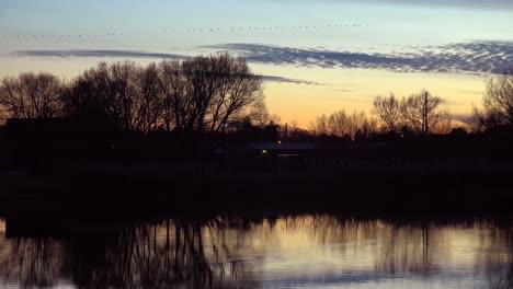 Los-P�jaros-Vuelan-En-Formaci�n-Sobre-Un-Lago-Del-Medio-Oeste-En-Oto�o-Los-Pájaros-Vuelan-En-Formación-Sobre-Un-Lago-Del-Medio-Oeste-En-Otoño