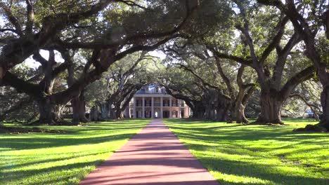 A-beautiful-gracious-Southern-mansion-amongst-a-long-treelined-arcade