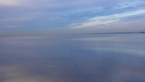 A-vast-open-bay-of-ocean-or-tidal-bay-near-Tampa-Florida