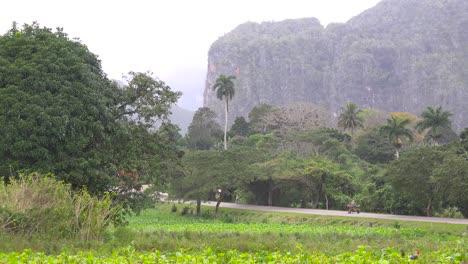 Una-Foto-De-Establecimiento-Del-Hermoso-Parque-Nacional-De-Viñales-Cuba-