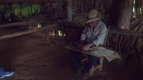 A-farmer-rolls-cigars-inside-a-tobacco-barn-in-rural-Cuba-1
