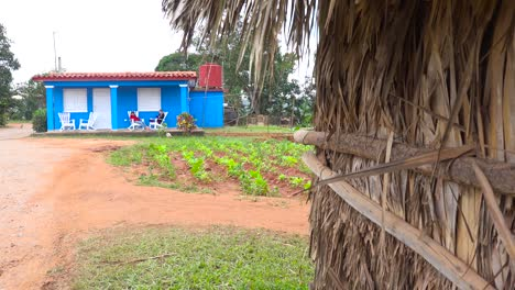 An-establishing-shot-of-a-farm-house-on-a-tobacco-farm-in-Vinales-Cuba