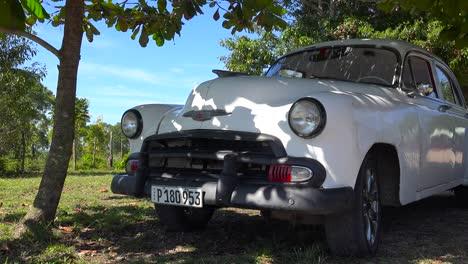 A-beautiful-classic-old-car-sits-under-a-tree-in-a-field-in-Cuba