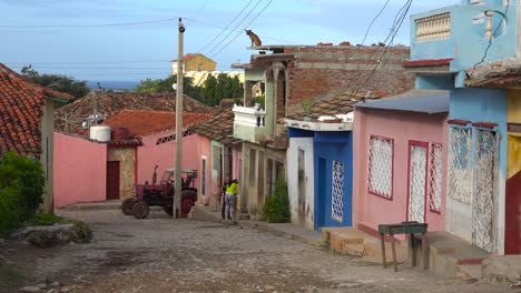 A-dog-stands-high-on-the-top-of-a-building-looking-out-over-the-city-of-Trinidad-Cuba-2