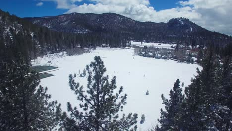 A-beautiful-aerial-over-pine-trees-in-winter-reveals-a-snow-covered-shore-of-Lake-Tahoe-1