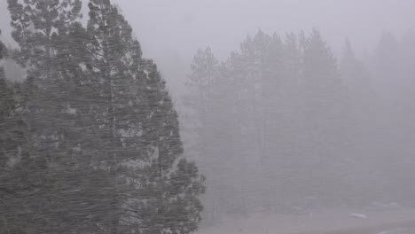 A-blinding-snowstorm-strikes-in-the-Sierra-Nevada-mountains