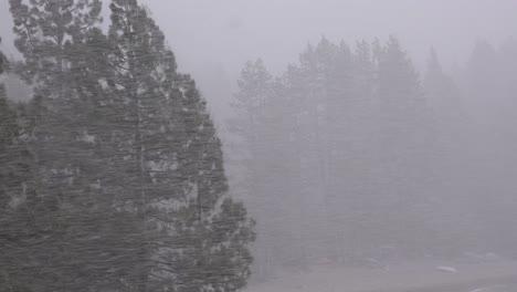 Ein-Blendender-Schneesturm-Schlägt-In-Den-Bergen-Der-Sierra-Nevada-Zu