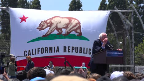 Bernie-Sanders-speaks-in-front-of-a-huge-crowd-at-a-political-rally-about-the-war-on-drugs