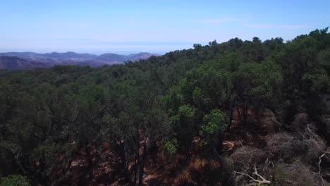 Una-Hermosa-Toma-Aérea-Sobre-Las-Cimas-De-Las-Montañas-De-Santa-Ynez-Cerca-De-Santa-Bárbara-Revela-El-Océano-Pacífico-Distante