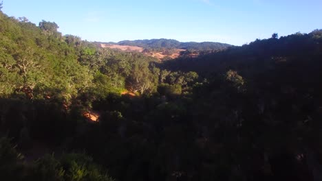 Aerial-footage-of-the-rolling-hills-oak-trees-and-farms-of-Central-California-1