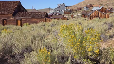 Sagebrush-grows-in-the-ghost-town-of-Bodie-California