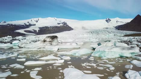 Slow-aerial-across-the-massive-glacier-lagoon-filled-with-icebergs-at-Fjallsarlon-Iceland-suggests-global-warming-and-climate-change-10