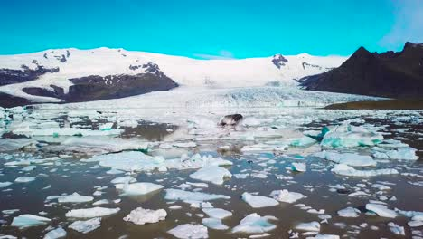 Slow-aerial-across-the-massive-glacier-lagoon-filled-with-icebergs-at-Fjallsarlon-Iceland-suggests-global-warming-and-climate-change-12