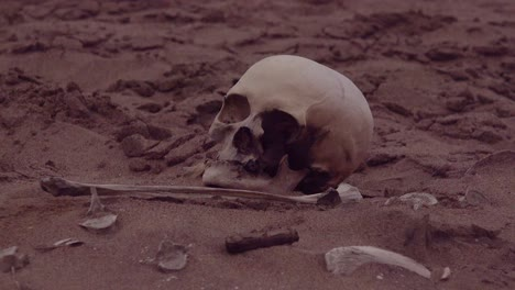 Human-skeleton-skeletal-remains-lie-in-the-sand-dunes-along-a-remote-part-of-the-Skeleton-Coast-Atlantic-Ocean-Namibia-Africa