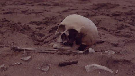 Human-skeleton-skeletal-remains-lie-in-the-sand-dunes-along-a-remote-part-of-the-Skeleton-Coast-Atlantic-Ocean-Namibia-Africa