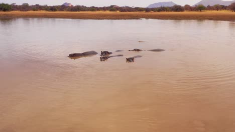 Very-good-aerial-over-a-watering-hole-with-a-group-of-hippos-bathing-in-Erindi-Park-Namibia-Africa-2