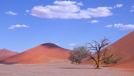 Astonishing-time-lapse-of-clouds-moving-over-Dune-45-a-massive-sand-dune-in-the-Namib-Naukluft-desert-Namibia-1