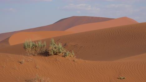 Establishing-shot-of-Namib-Naukluft-National-Park-in-the-Namib-desert-and-massive-sand-dunes-Namibia