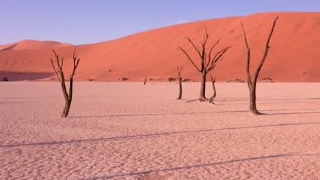 Increíbles-árboles-Muertos-Siluetas-Al-Amanecer-En-Deadvlei-Y-Sossusvlei-En-Namib-Parque-Nacional-Naukluft-Desierto-De-Namib-Namibia-4-Increíbles-árboles-Muertos-Siluetas-Al-Amanecer-En-Deadvlei-Y-Sossusvlei-En-Namib-Parque-Nacional-Naukluft-Desierto-De-Namib-Namibia-4