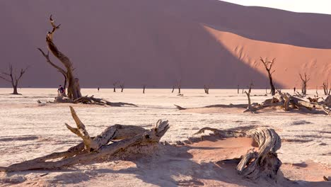 Tourists-walk-near-dead-trees-silhouetted-at-dawn-at-Deadvlei-and-Sossusvlei-in-Namib-Naukluft-National-Park-Namib-desert-Namibia-1