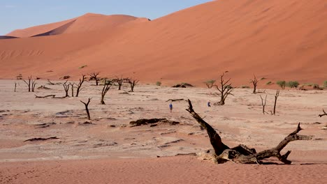 Tourists-walk-near-dead-trees-silhouetted-at-dawn-at-Deadvlei-and-Sossusvlei-in-Namib-Naukluft-National-Park-Namib-desert-Namibia-2