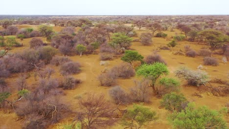 Aerial-of-over-the-savannah-ends-at-a-safari-jeep-on-the-plains-of-Africa-at-Erindi-Game-Preserve-Namibia-