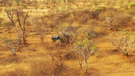Excellent-aerial-of-a-safari-jeep-traveling-on-the-plains-of-Africa-at-Erindi-Game-Preserve-Namibia-with-native-San-tribal-spotter-guide-sitting-on-front-spotting-wildlife