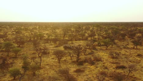 Aerial-of-a-safari-jeep-traveling-on-the-plains-of-Africa-at-Erindi-Game-Preserve-Namibia-with-native-San-tribal-spotter-guide-sitting-on-front-spotting-wildlife-7