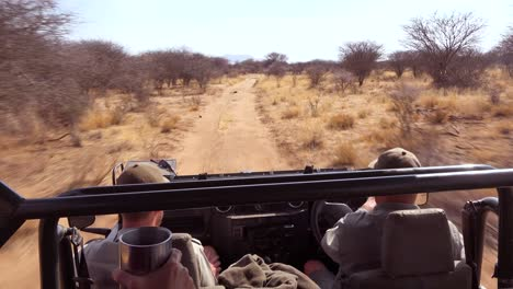 POV-shot-from-a-fast-moving-safari-jeep-on-the-plains-of-Africa-Erindi-Park-Namibia