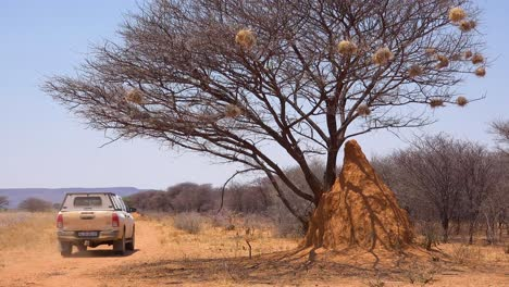 Un-Vehículo-De-Safari-Toyota-Hi-Lux-Pasa-Un-Alto-Termitero-En-Un-Safari-En-Namibia
