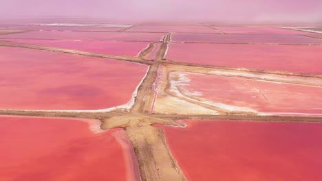 Hermosa-Antena-Sobre-Rojo-Brillante-Y-Rosa-Salt-Pan-Granjas-Cerca-De-Walvis-Bay-Namibia-2