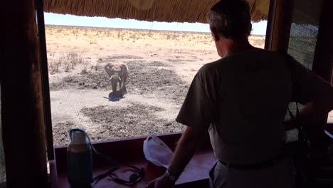Los-Turistas-Miran-Por-Una-Persiana-En-Un-Parque-De-Juegos-De-Safari-De-Vida-Silvestre-En-Un-Elefante-En-Un-Abrevadero-En-Namibia