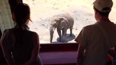 Los-Turistas-Miran-Por-Una-Persiana-En-Un-Parque-De-Juegos-De-Safari-De-Vida-Silvestre-En-Un-Elefante-En-Un-Abrevadero-En-Namibia-1
