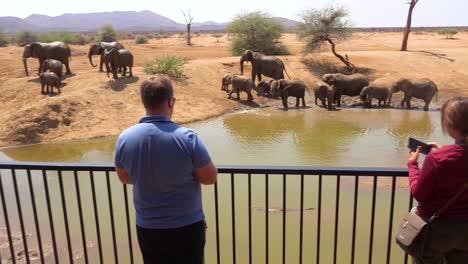 Los-Turistas-Toman-Fotografías-De-Los-Elefantes-Bañándose-En-Un-Abrevadero-Desde-El-Balcón-De-Un-Hotel-En-Erindi-Game-Reserve-Namibia