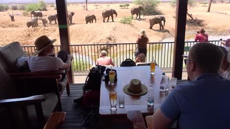 Los-Turistas-Toman-Fotografías-De-Elefantes-Bañándose-En-Un-Abrevadero-Desde-El-Balcón-De-Un-Hotel-En-Erindi-Game-Reserve-Namibia-1
