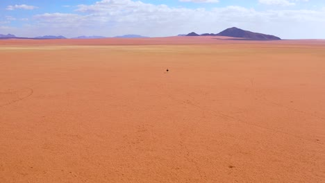 Aerial-as-a-very-lonely-ostrich-walks-on-the-plains-of-Africa-in-the-Namib-desert-Namibia