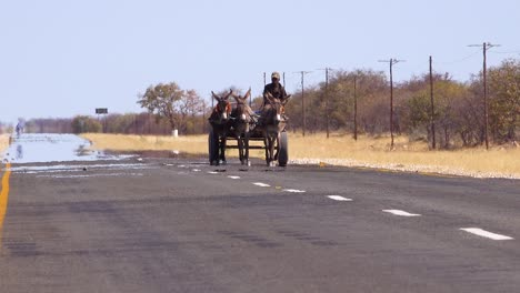 A-donkey-cart-moves-along-a-paved-road-in-the-Namibia-desert-with-heat-rising