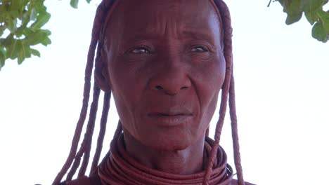 Extreme-close-up-portrait-of-a-Himba-tribal-African-woman-face-with-mud-dreadlocks-hair-and-neck-ring-jewelry