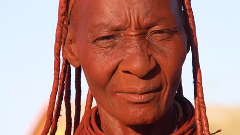 Extreme-close-up-portrait-of-a-Himba-tribal-African-woman-face-with-mud-dreadlocks-hair-and-neck-ring-jewelry-1