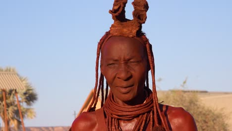 Close-up-portrait-of-a-Himba-tribal-African-woman-face-with-mud-dreadlocks-hair-and-neck-ring-jewelry