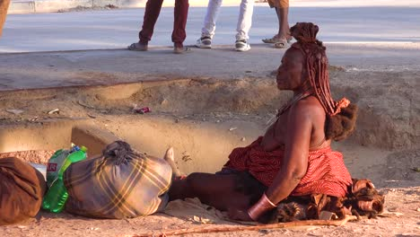 A-Himba-tribal-woman-sits-beside-the-road-with-amazing-hairstyle-of-mud-and-braids-and-dreadlocks-in-the-market-town-of-Opuwo-Namibia