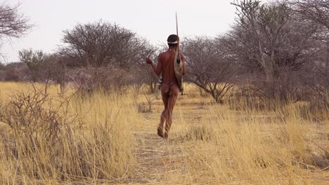 A-San-tribal-bushman-hunter-in-Namibia-Africa-walks-quiety-sniffs-the-air-and-samples-the-soil-for-wind-direction-hunting-for-prey