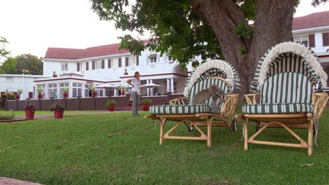 Vervet-monkeys-play-on-lawn-furniture-on-the-grounds-of-the-elegant-and-luxurious-Victoria-Falls-Hotel-1