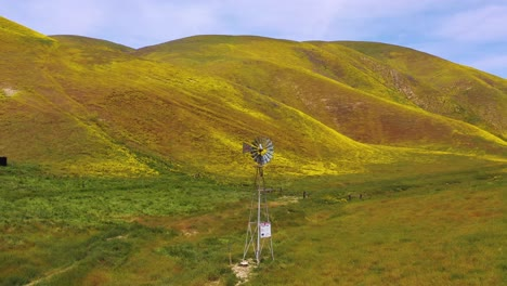 Aerial-of-a-windmill-blowing-on-a-California-hillside-covered-with-wildflowers-during-superbloom
