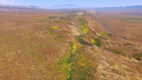 Very-good-aerial-of-the-San-Andreas-Fault-earthquake-faultline-running-through-the-Carrizo-Plain-of-California-4